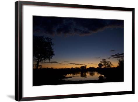 Habitat in South Africa's Timbavati Game Reserve-Steve Winter-Framed Art Print