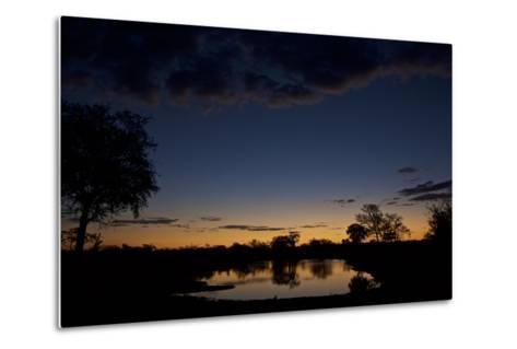 Habitat in South Africa's Timbavati Game Reserve-Steve Winter-Metal Print