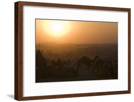 A Setting Sun and Silhouetted Camels at the Pushkar Camel Fair-Steve Winter-Framed Art Print