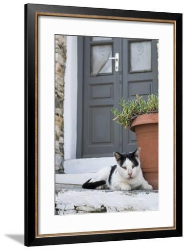 A Local Cat Rests in Front of a Doorway-Krista Rossow-Framed Art Print