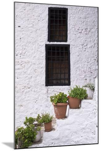 Potted Plants Line the White-Washed Stairways at the National Ethnographic Museum-Krista Rossow-Mounted Photographic Print