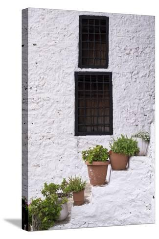 Potted Plants Line the White-Washed Stairways at the National Ethnographic Museum-Krista Rossow-Stretched Canvas Print