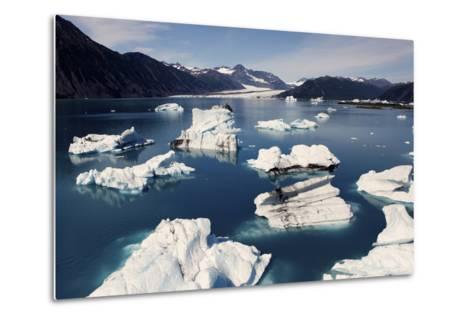 Icebergs Floating on Sea at Bear Glacier in the Kenai Peninsula-Jill Schneider-Metal Print