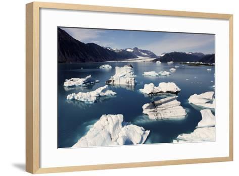 Icebergs Floating on Sea at Bear Glacier in the Kenai Peninsula-Jill Schneider-Framed Art Print