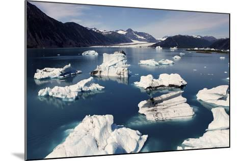 Icebergs Floating on Sea at Bear Glacier in the Kenai Peninsula-Jill Schneider-Mounted Photographic Print