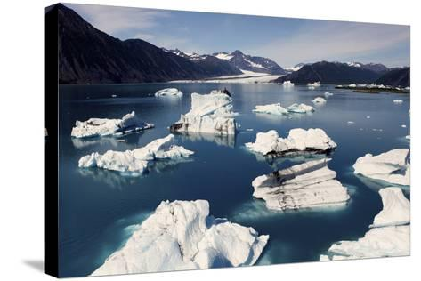 Icebergs Floating on Sea at Bear Glacier in the Kenai Peninsula-Jill Schneider-Stretched Canvas Print
