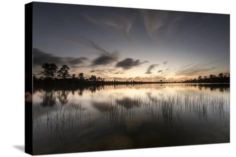 Twilight over Florida's Everglades National Park-Keith Ladzinski-Stretched Canvas Print