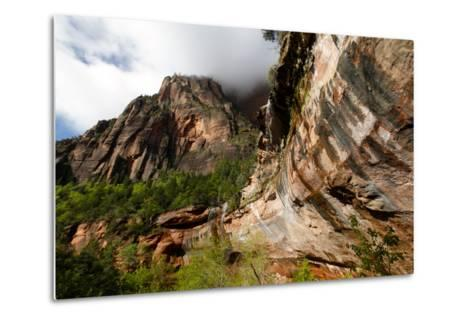Early Morning in Zion National Park in Utah, USA-Jill Schneider-Metal Print