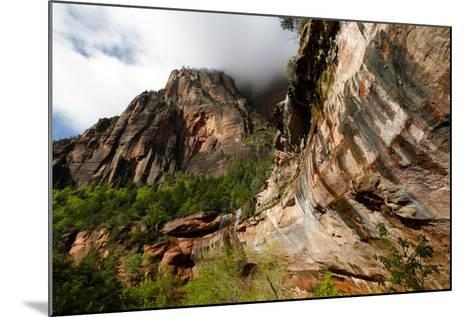 Early Morning in Zion National Park in Utah, USA-Jill Schneider-Mounted Photographic Print
