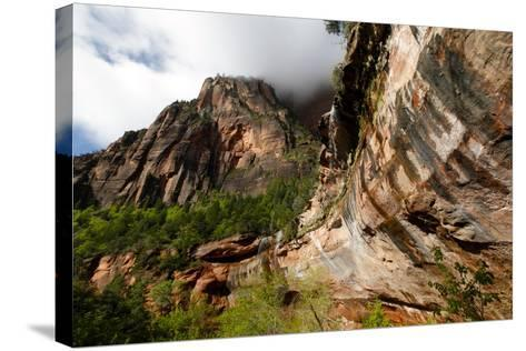 Early Morning in Zion National Park in Utah, USA-Jill Schneider-Stretched Canvas Print