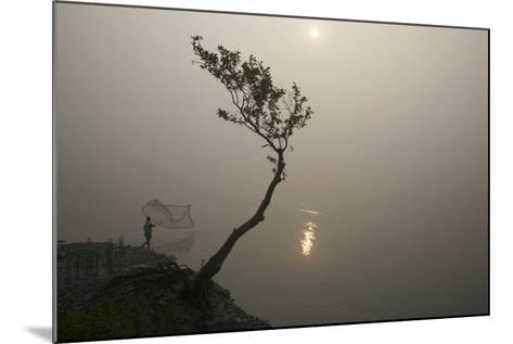 A Fisherman Casts a Net in India's Sundarbans Region-Steve Winter-Mounted Photographic Print