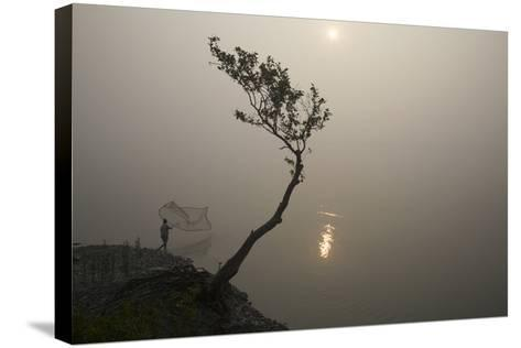 A Fisherman Casts a Net in India's Sundarbans Region-Steve Winter-Stretched Canvas Print