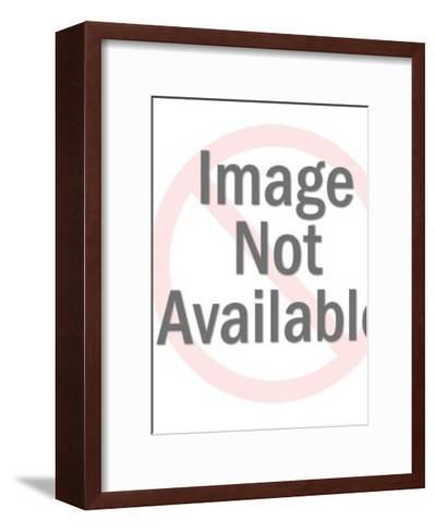 Photographer Taking Picture of Couple Embracing-Pop Ink - CSA Images-Framed Art Print