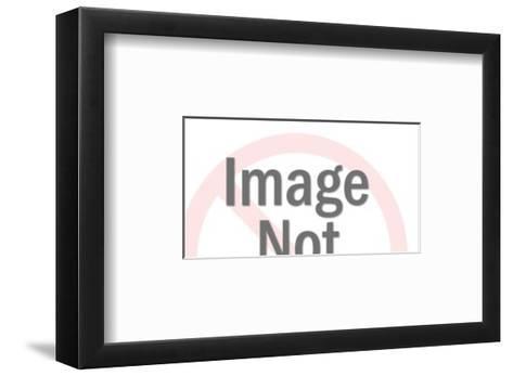 Flex O-Pop Ink - CSA Images-Framed Art Print