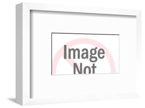 Mall-Pop Ink - CSA Images-Framed Art Print