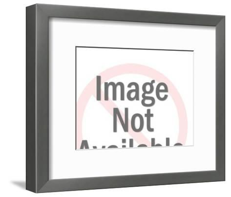 Middle Eastern Traveler Scene-Pop Ink - CSA Images-Framed Art Print