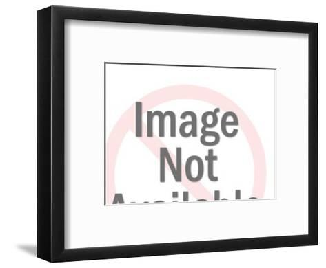 Young Woman Talking to Elderly Woman-Pop Ink - CSA Images-Framed Art Print