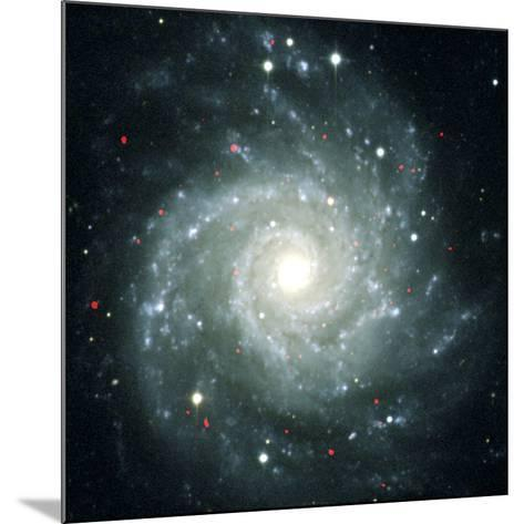 X-ray Sources In M74, Chandra Image--Mounted Photographic Print
