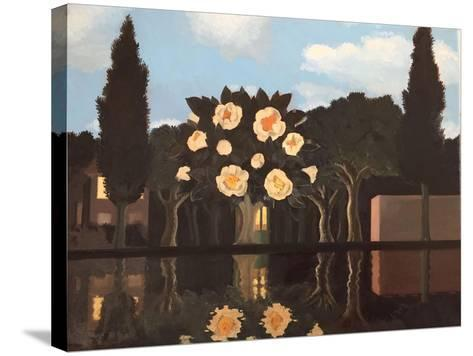 Reflection in Water, 2015-ELEANOR FEIN FEIN-Stretched Canvas Print