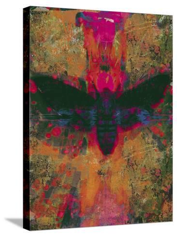 Death Moth Collage, 2016-David McConochie-Stretched Canvas Print