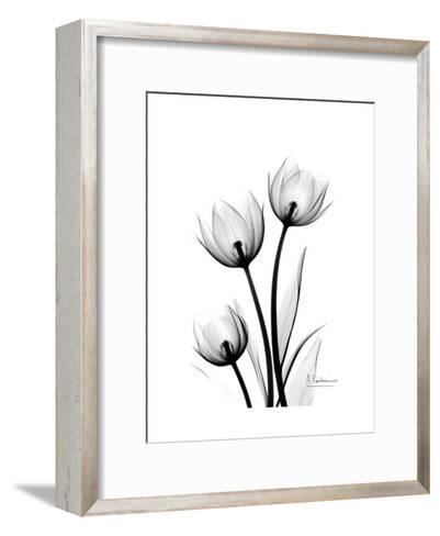 Tulips High Contrast-Albert Koetsier-Framed Art Print