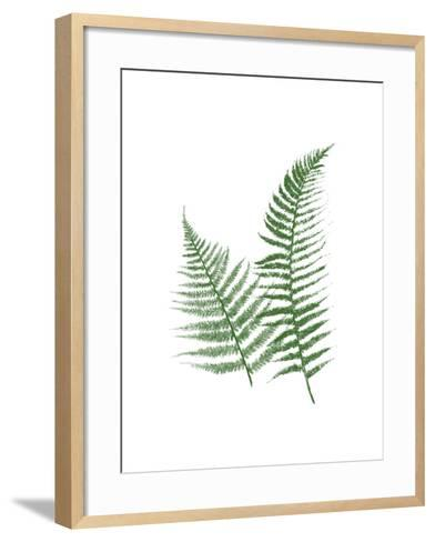 Green Ferns-Jace Grey-Framed Art Print