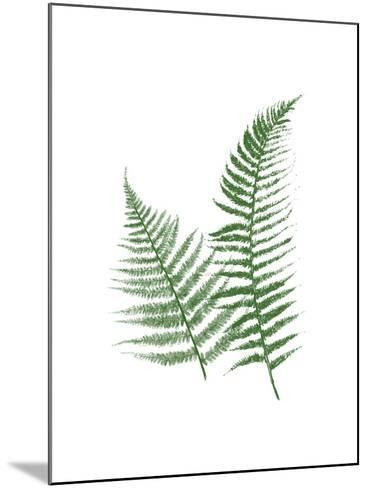 Green Ferns-Jace Grey-Mounted Art Print