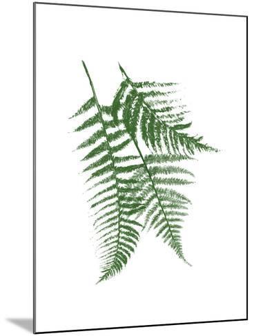 Green Ferns Mate-Jace Grey-Mounted Art Print