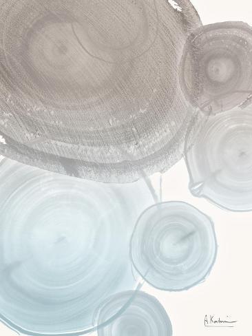Sea Mist Tree Rings-Albert Koetsier-Stretched Canvas Print