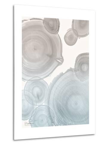 Sea Mist Tree Rings 2-Albert Koetsier-Metal Print