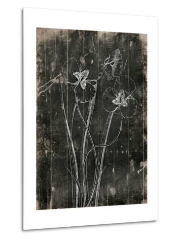Black Wood-Jace Grey-Metal Print