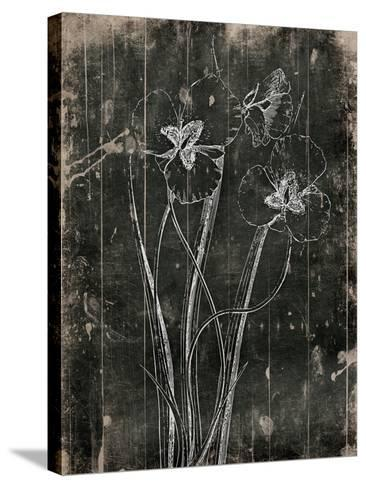 Black Wood-Jace Grey-Stretched Canvas Print
