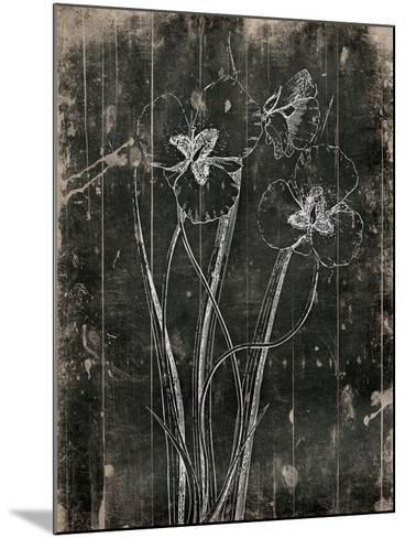 Black Wood-Jace Grey-Mounted Art Print