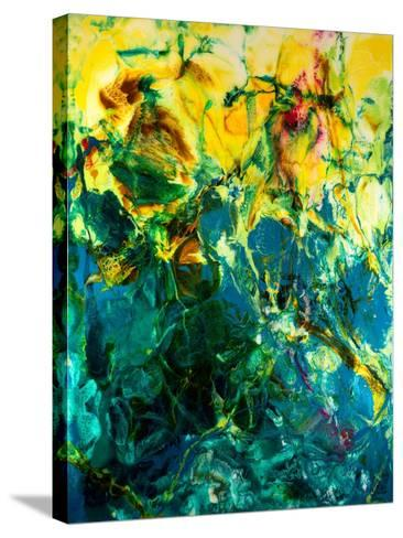 Poseidons Playground-Barbara Bilotta-Stretched Canvas Print