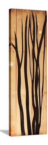 Branch On Wood-Jace Grey-Stretched Canvas Print