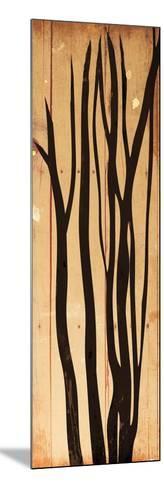 Branch On Wood-Jace Grey-Mounted Art Print