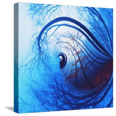 Variations on a Circle 12-Philippe Sainte-Laudy-Stretched Canvas Print