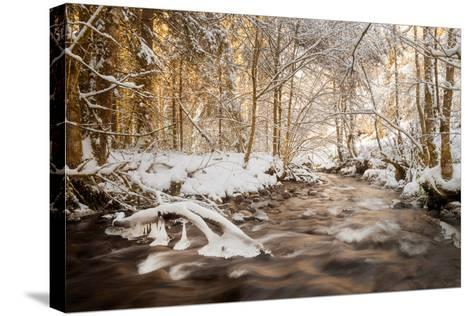 Sometimes the World is Perfect-Philippe Sainte-Laudy-Stretched Canvas Print
