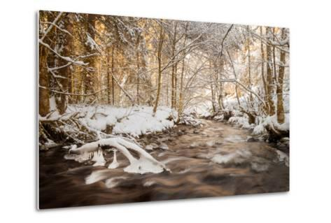 Sometimes the World is Perfect-Philippe Sainte-Laudy-Metal Print
