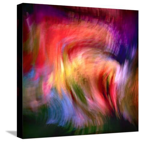 Phoenix 2-Ursula Abresch-Stretched Canvas Print