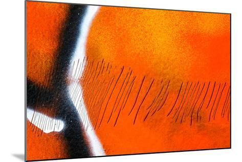 Scratches-Ursula Abresch-Mounted Photographic Print