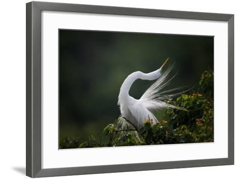 The Moment You Will Never Forget!-David H Yang-Framed Art Print