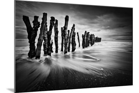 Timber Graffiti- Sobul-Mounted Photographic Print