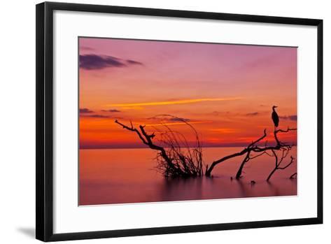 Quiet Evening-Verdon-Framed Art Print