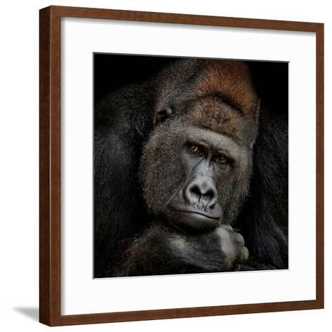 One Moment in Contact-Antje Wenner-Braun-Framed Art Print