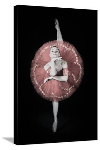 On Pointe-Darlene Hewson-Stretched Canvas Print