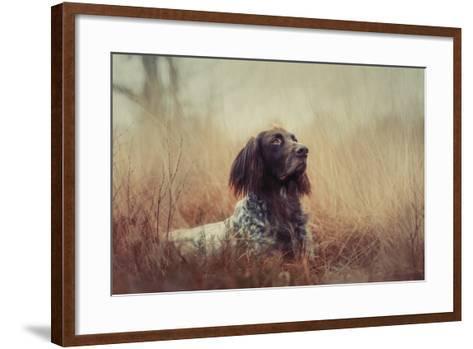 Beautiful Aragorn-Heike Willers-Framed Art Print