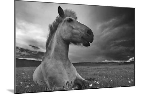 Moment in Time-Bragi Ingibergsson --Mounted Photographic Print