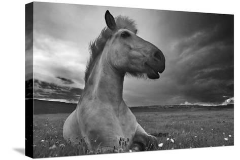 Moment in Time-Bragi Ingibergsson --Stretched Canvas Print