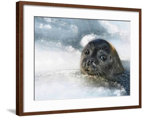 Do You Have a Fish?-Holger Droste-Framed Art Print